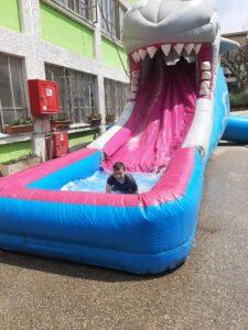 כריש חוויה